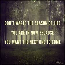 The season you are in 2